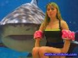 Interesting Animal Facts 4, Shark Attack Hot Fun Girls
