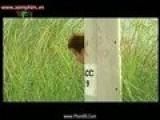 Bong Dung Muon Khoc Phan1 Tap 6