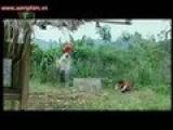 Bong Dung Muon Khoc Phan 2 Tap 3