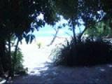 Video Tour Of Denis Island