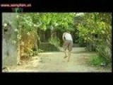 Bong Dung Muon Khoc Phan 5 Tap 6