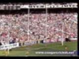 1989 VFL Grand Final: Hawthorn V Geelong