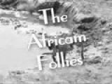 Africam Follies